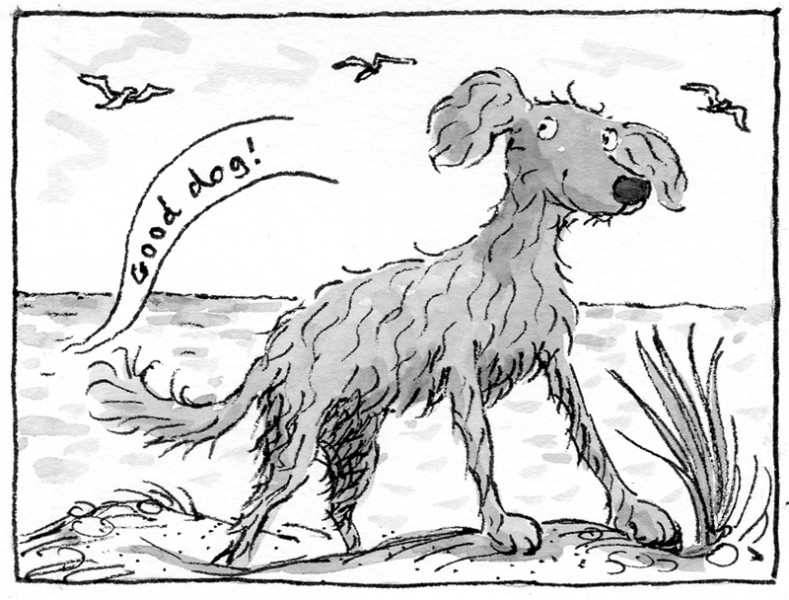 The Dog from the Sea 1
